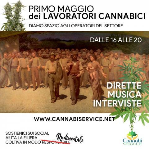 PRIMO MAGGIO CANNABICO